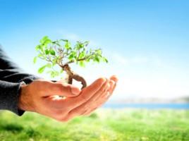 Ecological Leadership